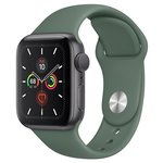Часы Apple Watch Series 5 GPS + Cellular 40mm Aluminum Case with Sport Band